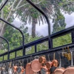 House Tomlin Kitchen Steel Steel Kitchen Windows 2