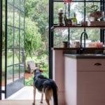 MW House Noordehoek View Dogs 2 Metal Windows Kitchen